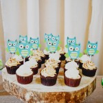 little-savvy-event-owl-themed-babyshower-25