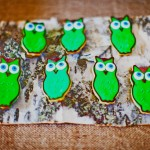 little-savvy-event-owl-themed-babyshower-7